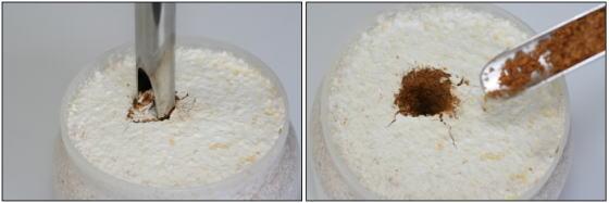 菌糸瓶 菌糸ビン